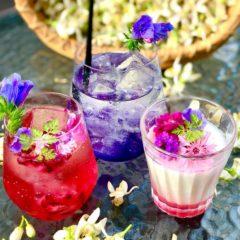 薔薇のスカッシュ コーンフラワー・エキウム  スミレラベンダージュース エキウム  薔薇ソースのブランマンジェ コーンフラワー・ミニバラ・エキウム